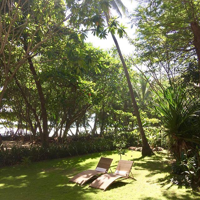 Life's simple pleasures #oceanfront #sunshine #getaway #luxury #vacation #rental #villa #maisonmarazul #santateresa #costarica #