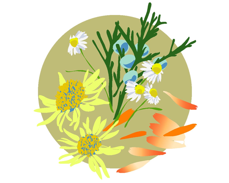 OBB_bouquet.jpg
