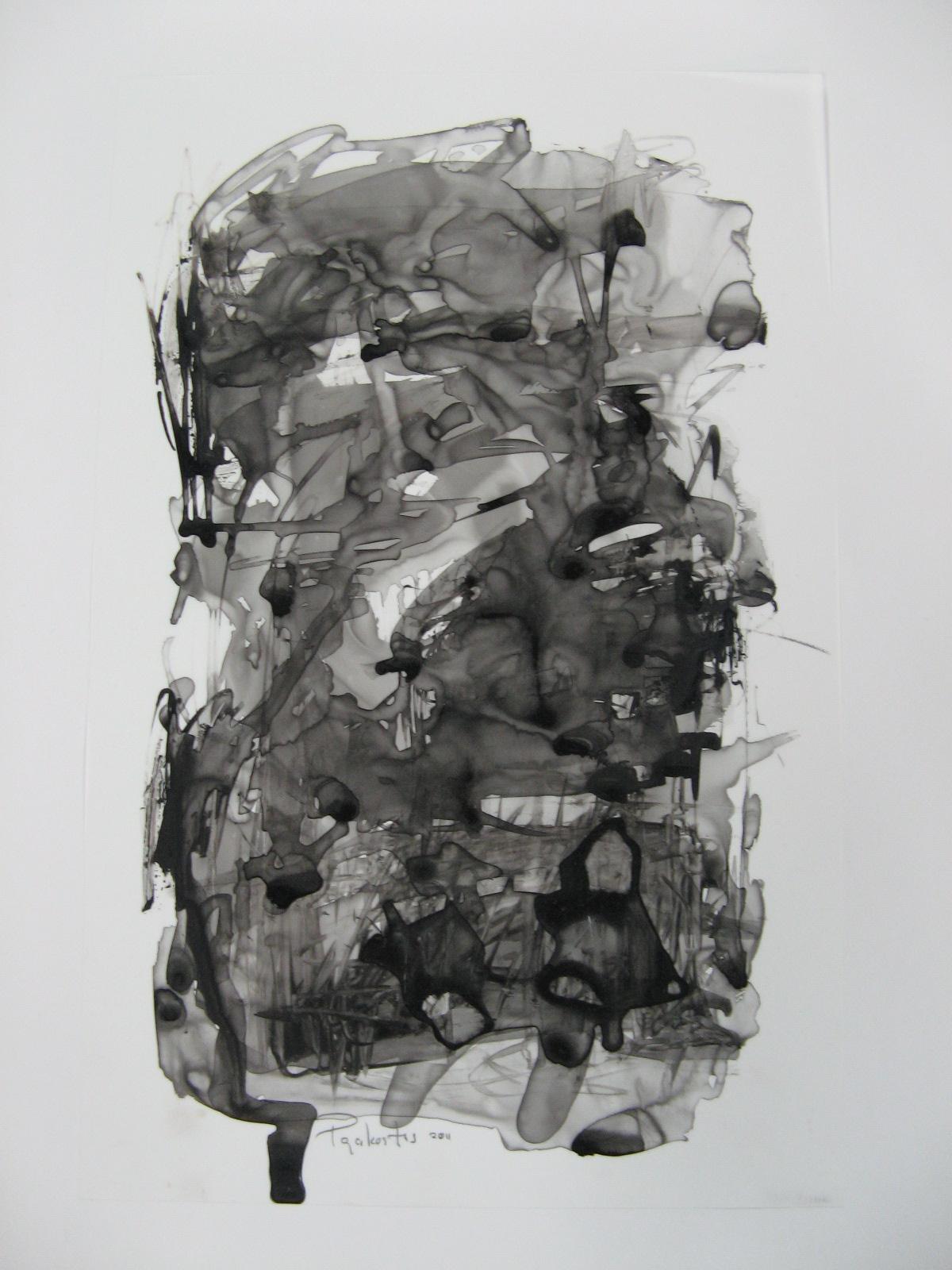 2011 ink on mylar 43.18 x 27.94cm (17 x 11in.) - IMG_1941.JPG