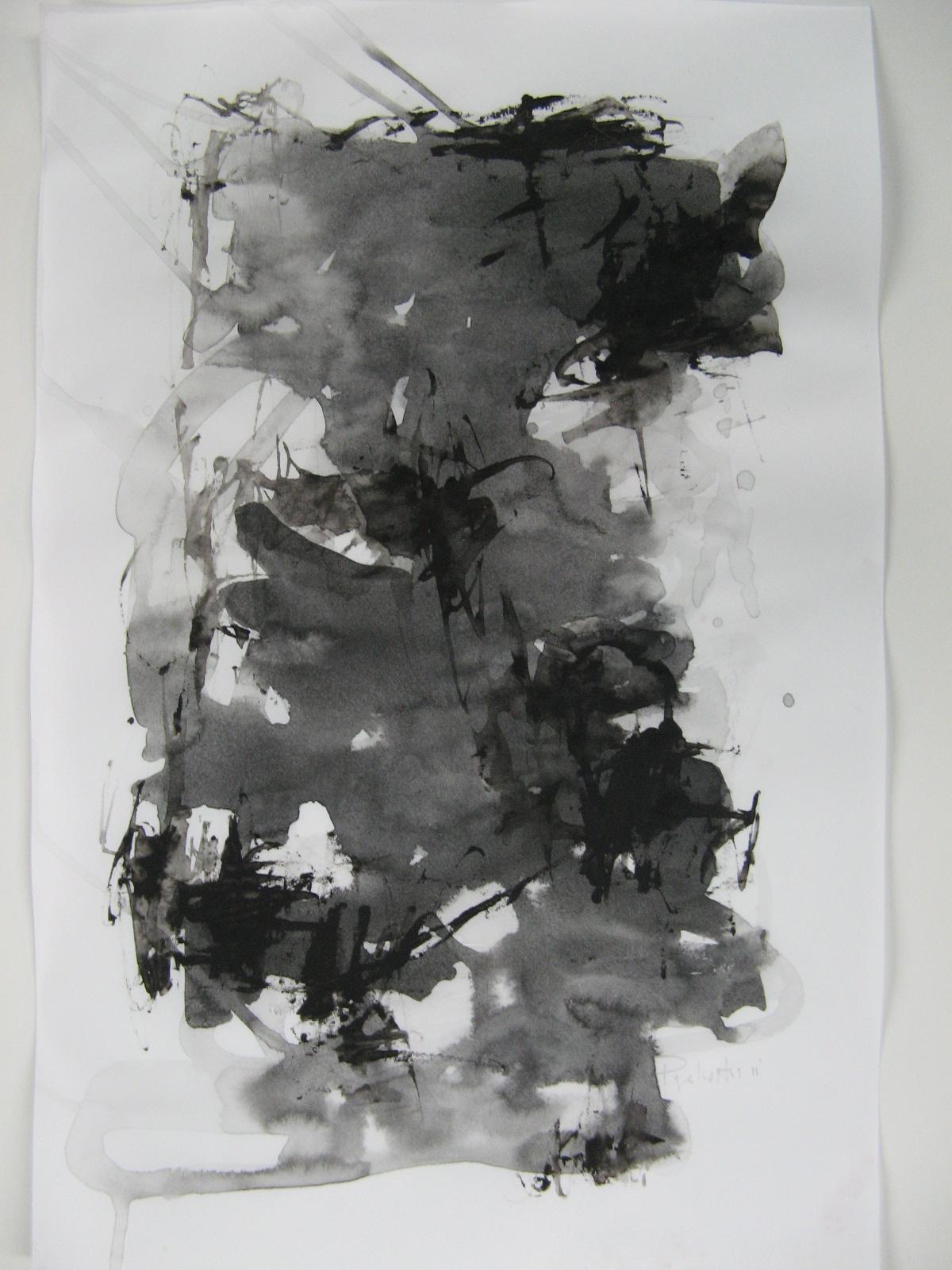 2011 ink on paper, 43.18 x 27.94cm (17 x 11in.) - IMG_1945.JPG