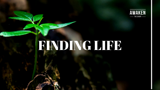 Finding life.png