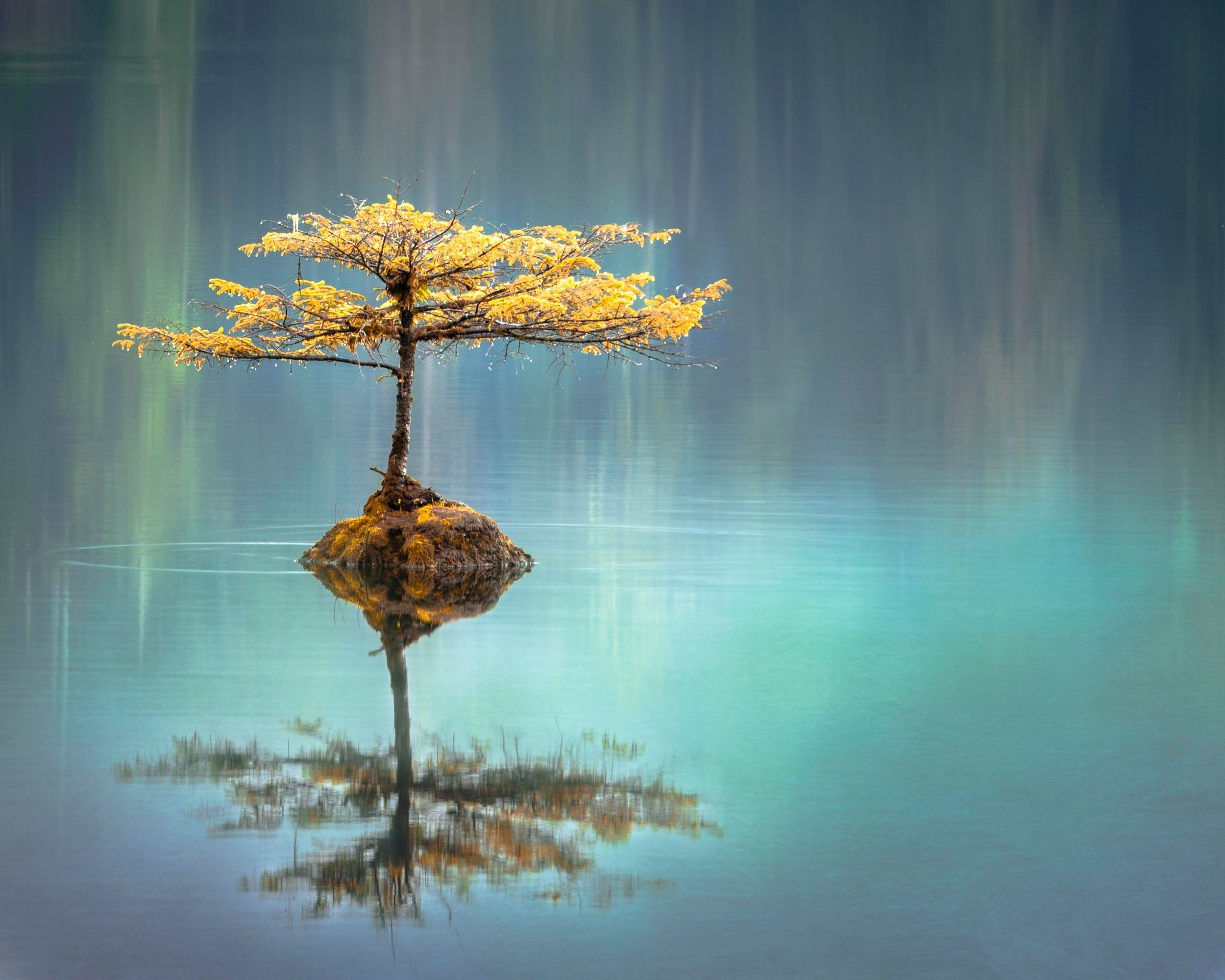 Calmness Is The Cradle Of Power - Josiah Gilbert Holland