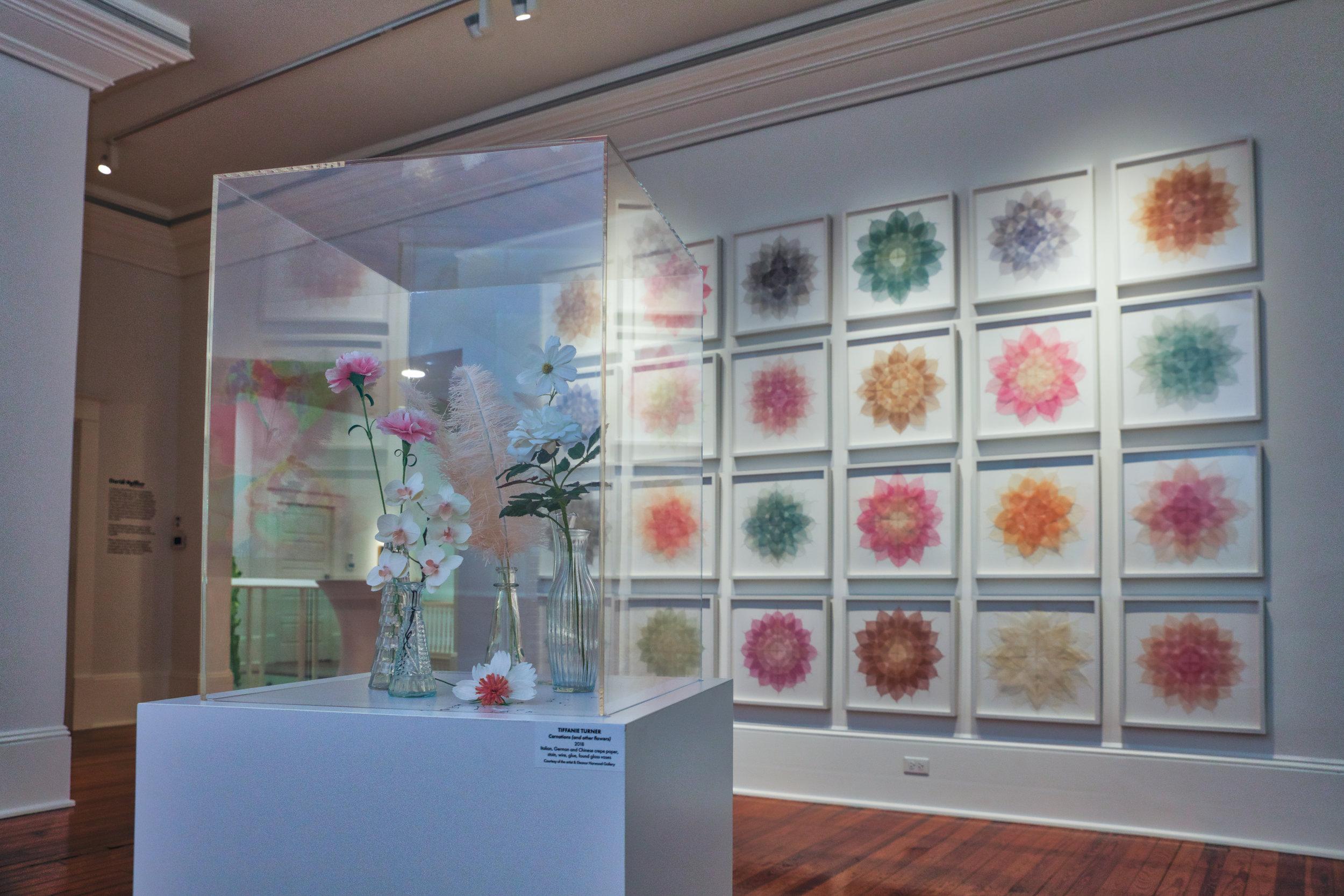Cornell Flora Exhibit-29.jpg