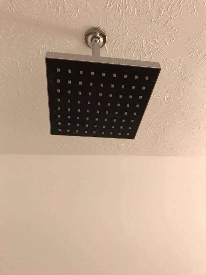 inn 206 shower head.jpg