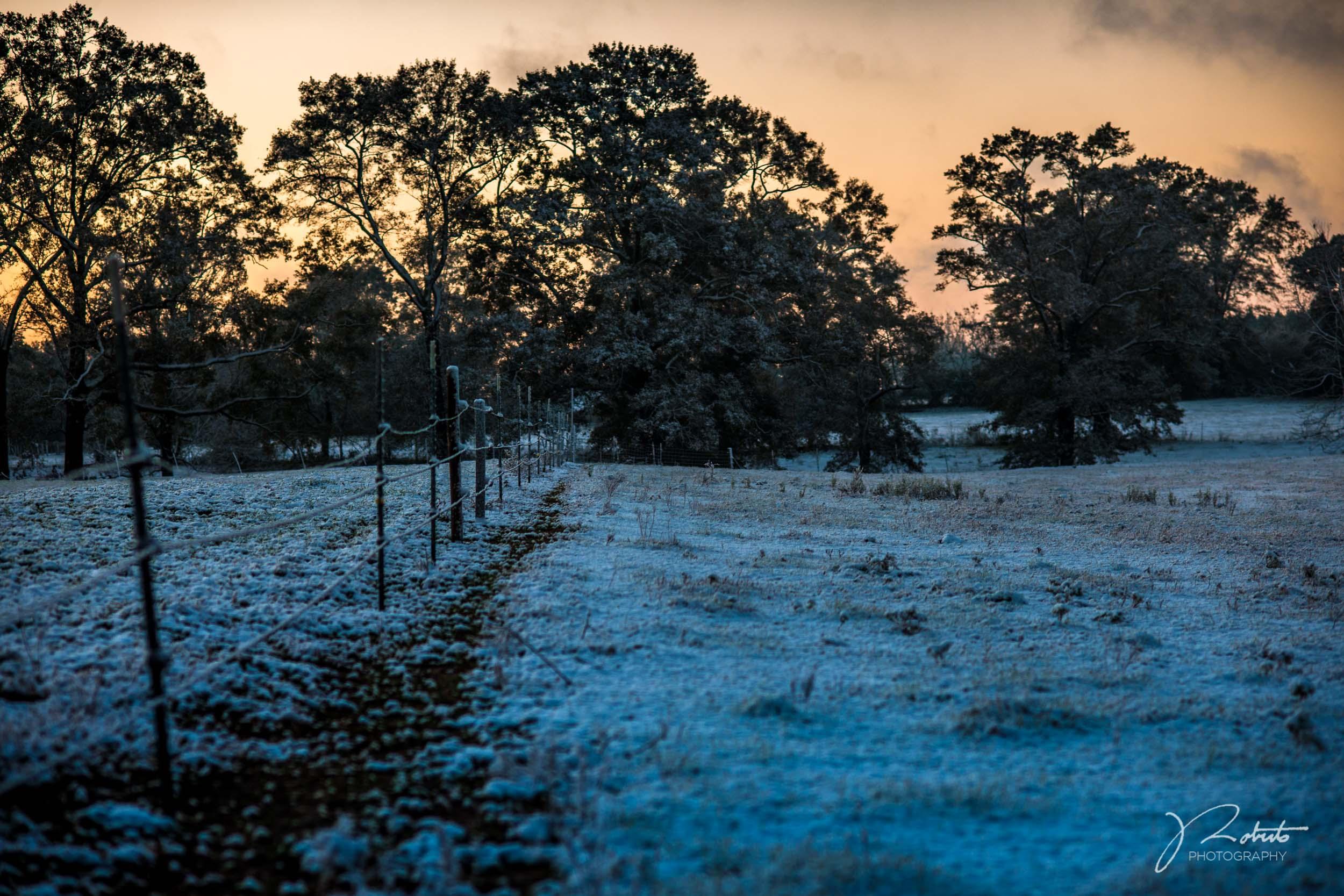 Snowfall_02.jpg