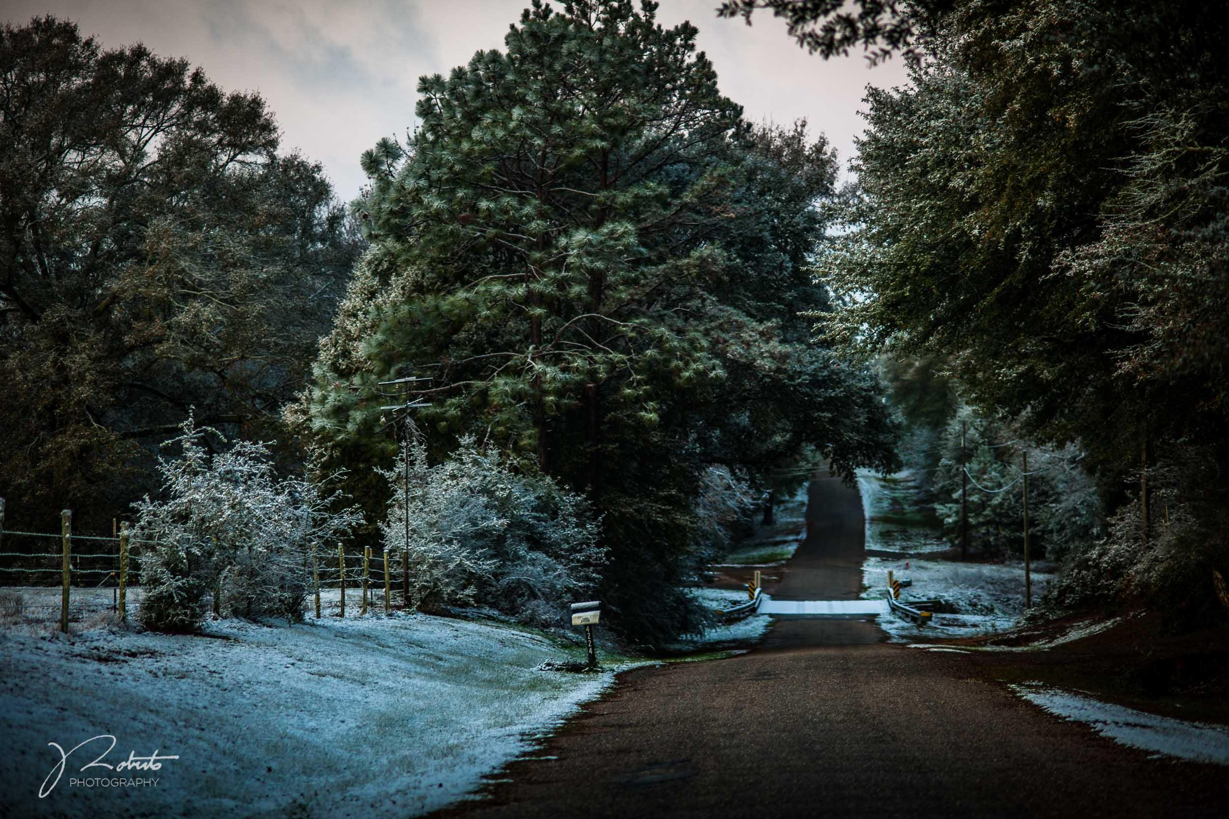Snowfall_03.jpg