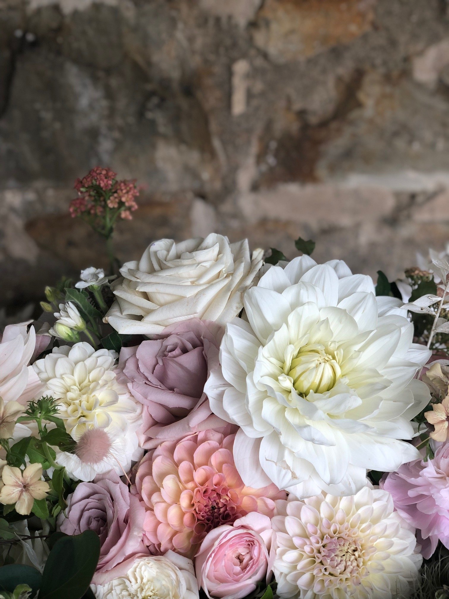 Laura is amazing!She was our celebrant back in March and I can't thank her enough for making the process so easy and relaxed!I would highly recommend her for anyone who wants a fun and friendly celebrant - Mr & Mrs Tomlin