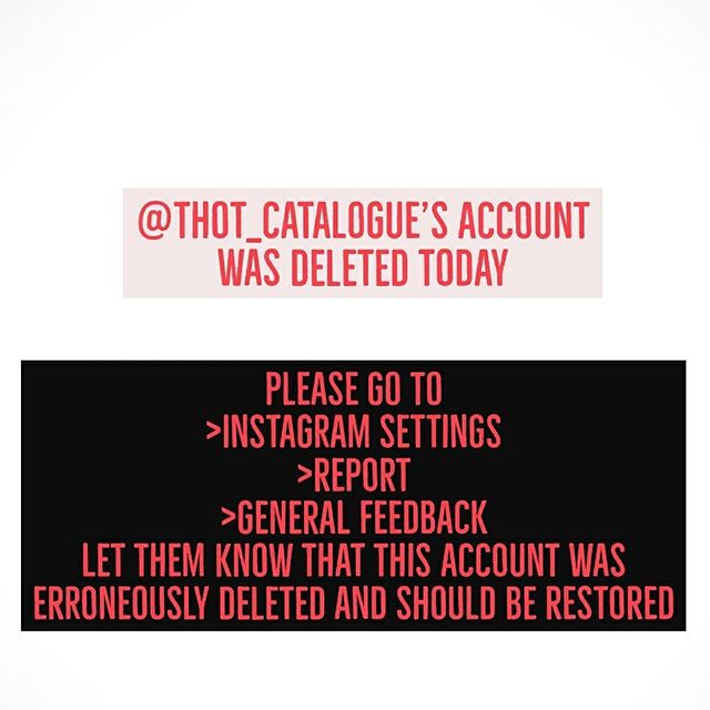 please let @instagram know you would like @th0t_catalog restored  edit: they are back!