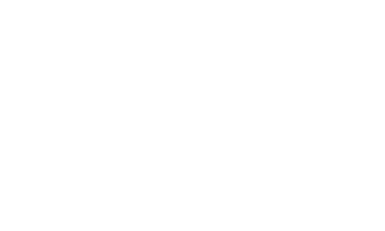 Almodovar Group, LLC 14 Years In Business