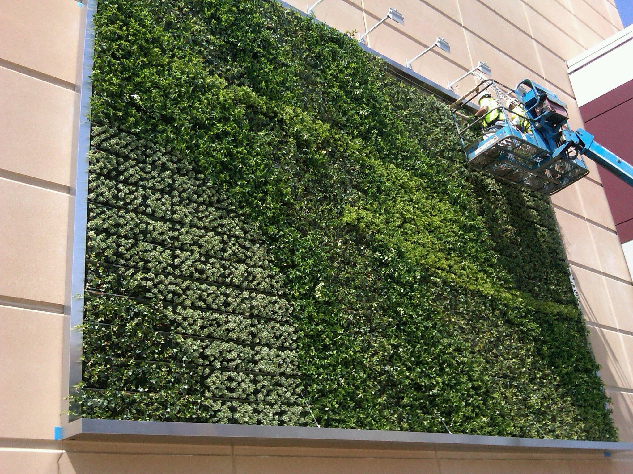 landscaping-garden-living-wall-fresh-green-wall-stainless-steel-landscape-garden-wall-decor-beige-stain-wall-stainless-steel-wall-lamp-living-wall-decorating-apartment-living-wall-design-ideas.jpeg
