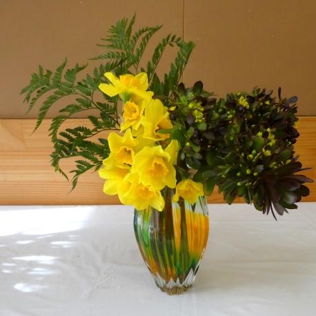 Helen - daffodils