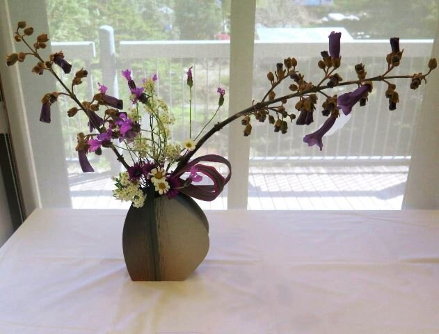 Maria - Paulownia flowers