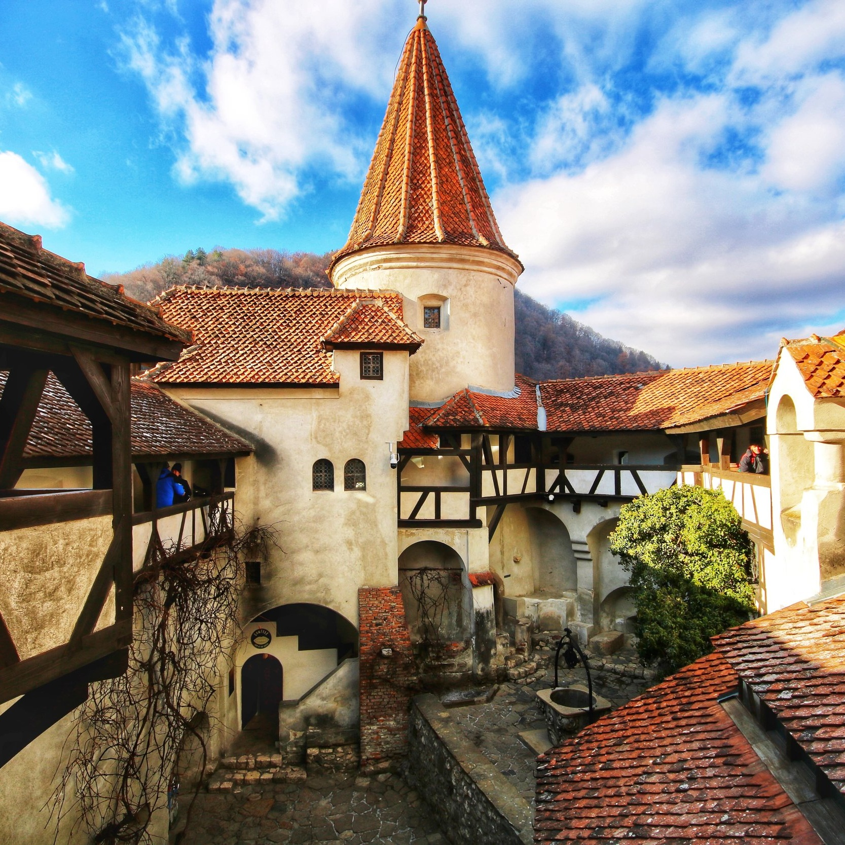 Trip Highlights.. - > Visit Bran Castle, made famous by Dracula!> Networking Drinks with local business owners> Join us on a wine tour in Transylvania> Meet new people and make new connections> Explore Romanian roasts with a coffee shop tour in Bucharest