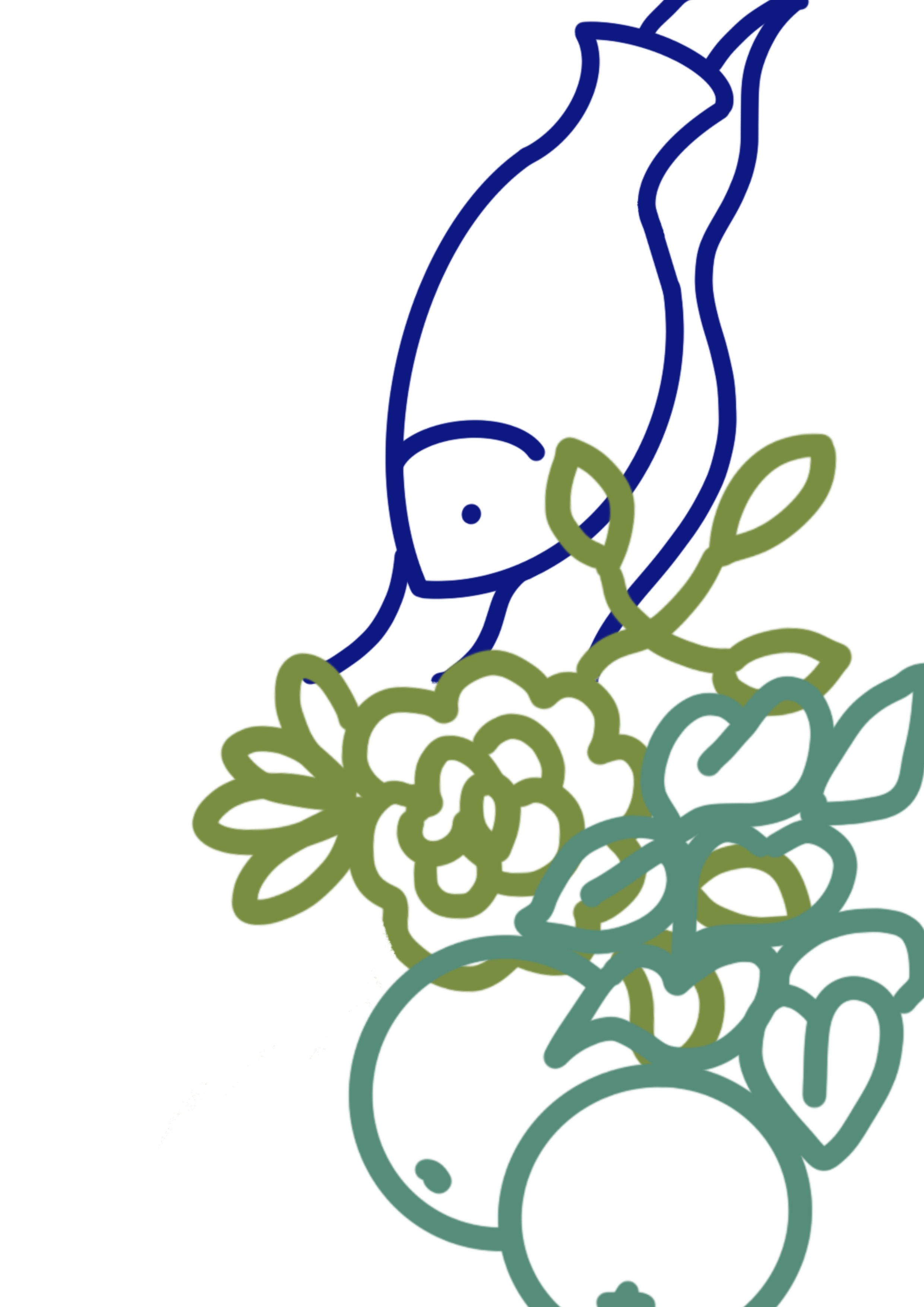 drawing of fish, flower and apple in pen