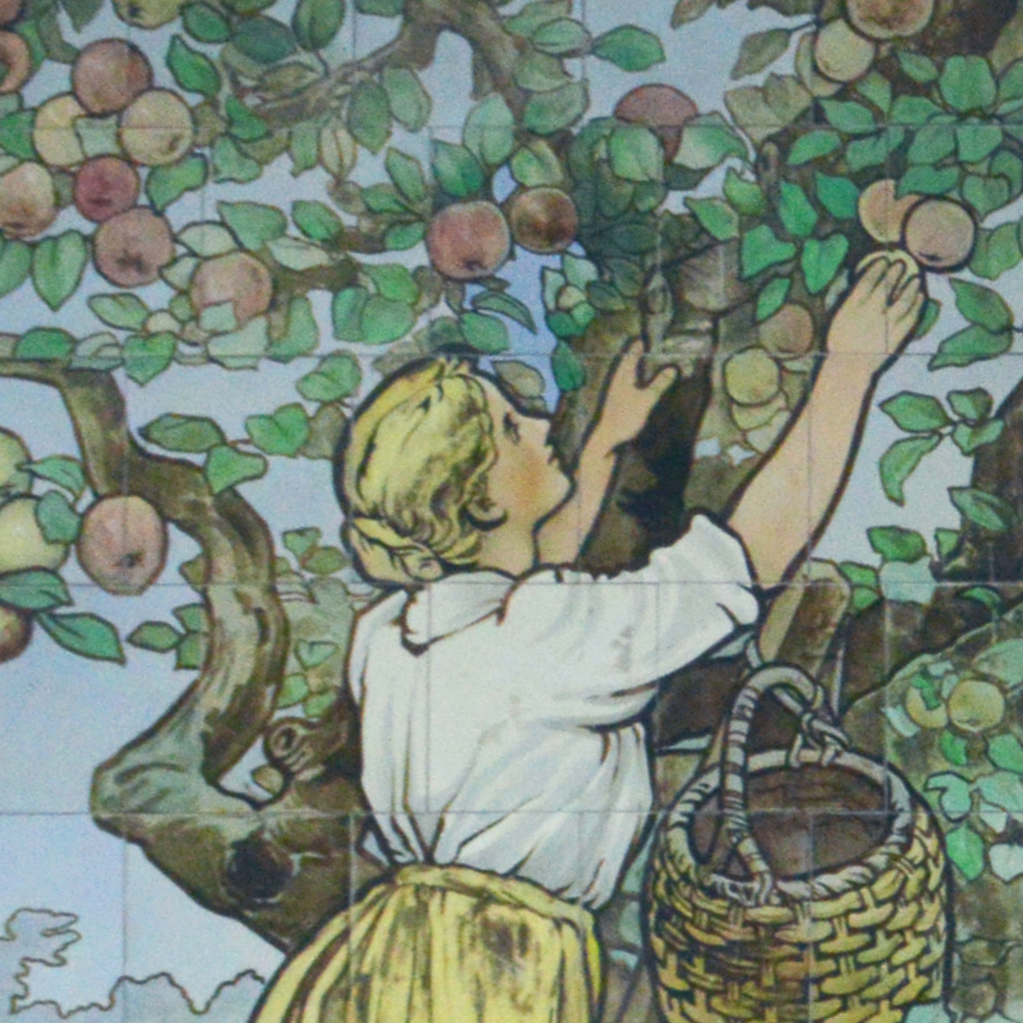 Charing Cross Hospital Original Tiles - drawing of a lady picking apples