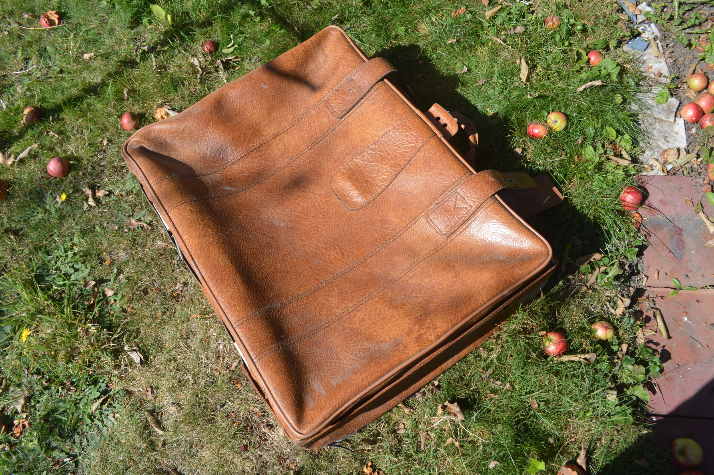 Leather suitcase on grass