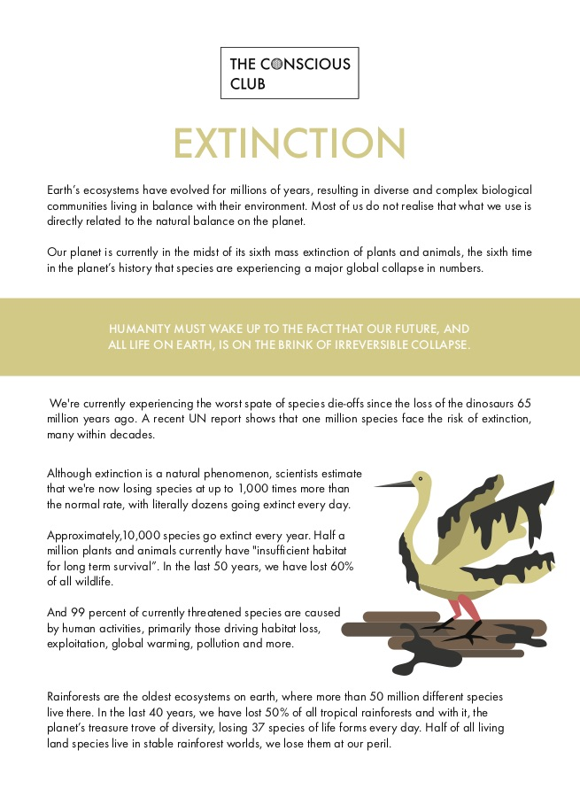 Fix-Flyer-Extintion-A6-Print-P1(Adobe2001-X1)-.jpg