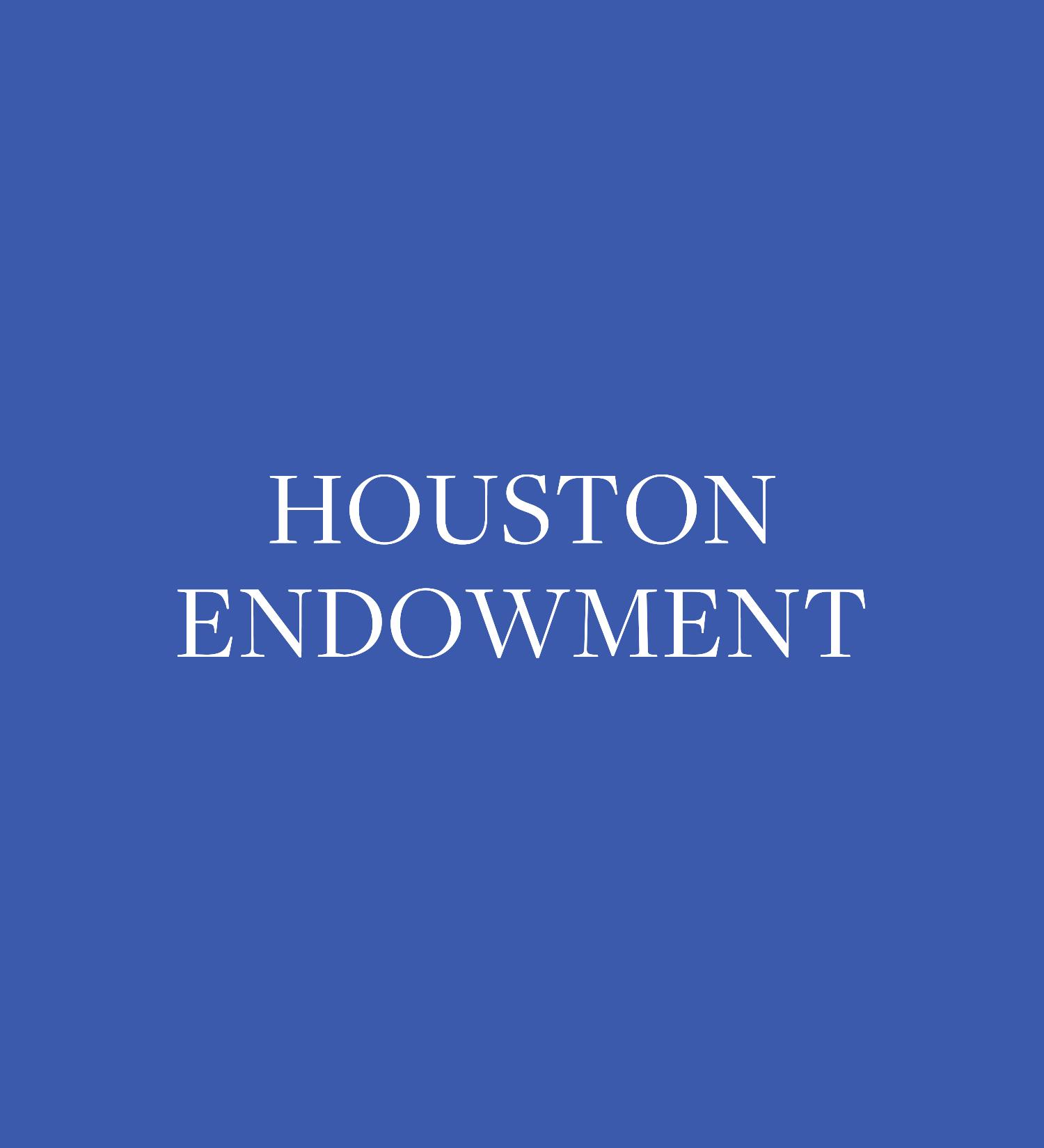 Copy of Houston Endowment