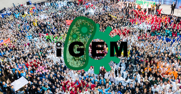 2016-iGEM_From_Above-cropped980-690x320-613x320.png
