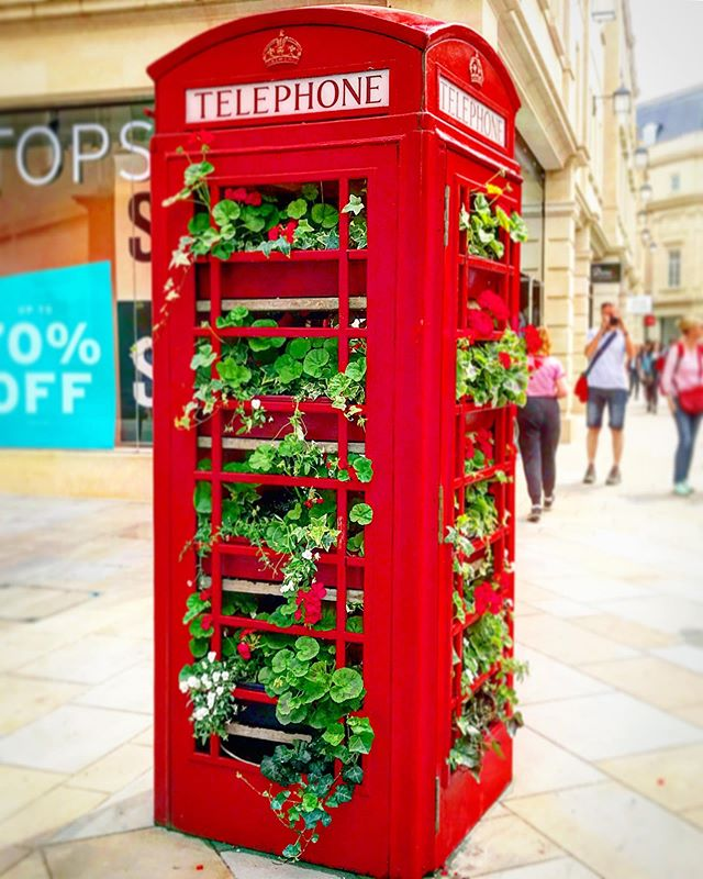 Continuing my very sedate holiday in Wiltshire, where plans change everyday and then we don't keep to them anyway. Had an absolutely lovely day in Bath yesterday. This red telephone box brimming with flowers made my day. It's so sad that these are not used for their original purpose anymore - everyone has mobile phones (that run out of batteries!) but there is something just so oldy woldy and evocative about telephone boxes ❤️ I could almost imagine a misty evening and a man in a trench coat 🧥 with sunglasses 🕶 going inside to hastily pick up a ringing 📞 and shiftily move away. I clearly enjoy Agatha Christie and Poirot too much 😂  Oh, and if you like history, I can HIGHLY recommend @theromanbaths in Bath. The entire place was absolutely thronging with tourists from around the world, yet, we all were able to see everything and enjoy all the details. The layout of the museum is superbly designed and the staff were excellent, with infinite patience. The gift shops, my favourite bit of any tourist place, is exceptional. 🙋♀️ I even did some Christmas shopping!  #christmasinjuly #bathtourism #summervacation2019