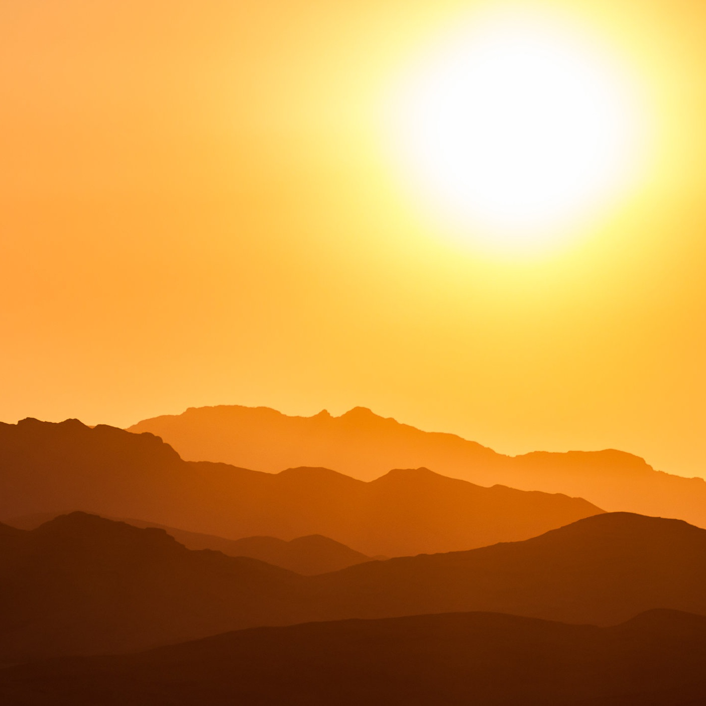 Realistic simulation of the outdoors - Watch the sun rise and set inside SmartTerra from the comfort of your home. Summon rain and thunderstorm at the touch of a button. Finally, top it all off with an accompanying soundtrack.