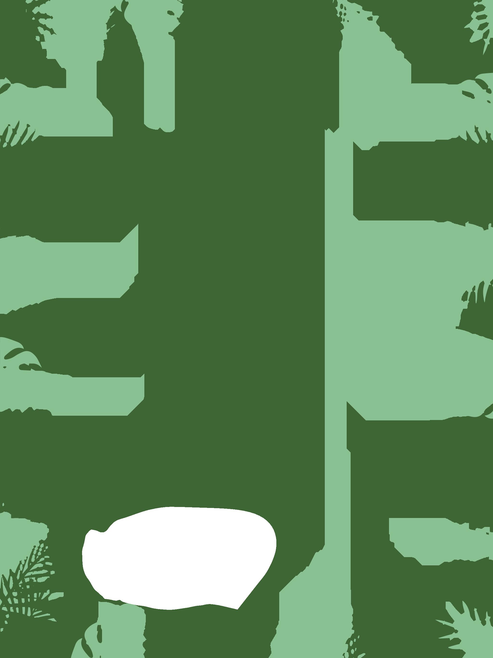 Ipad Vertical_2048x2732_Jungle_Green.png
