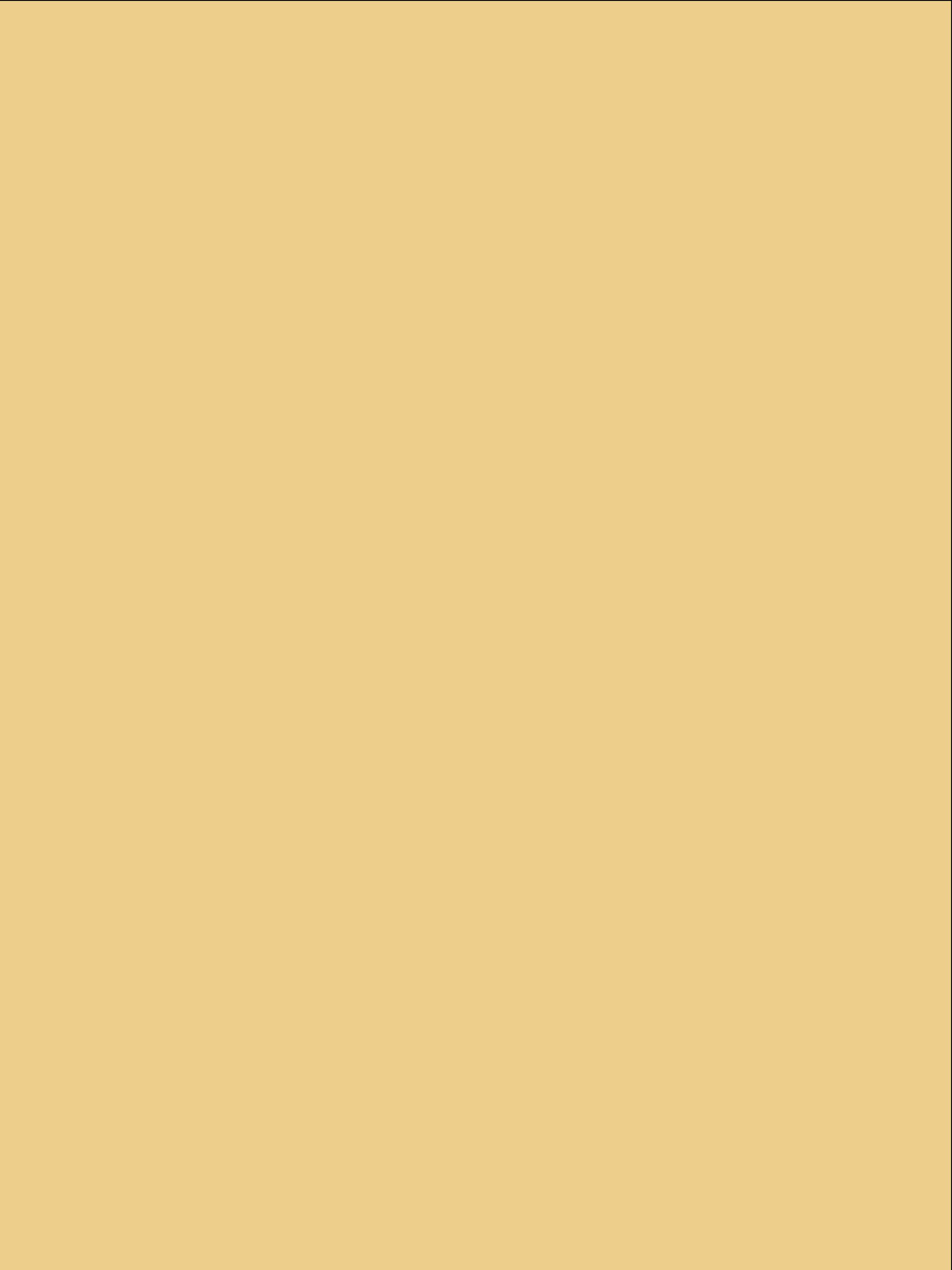 Ipad Vertical_2048x2732_Plaid_Gold.png