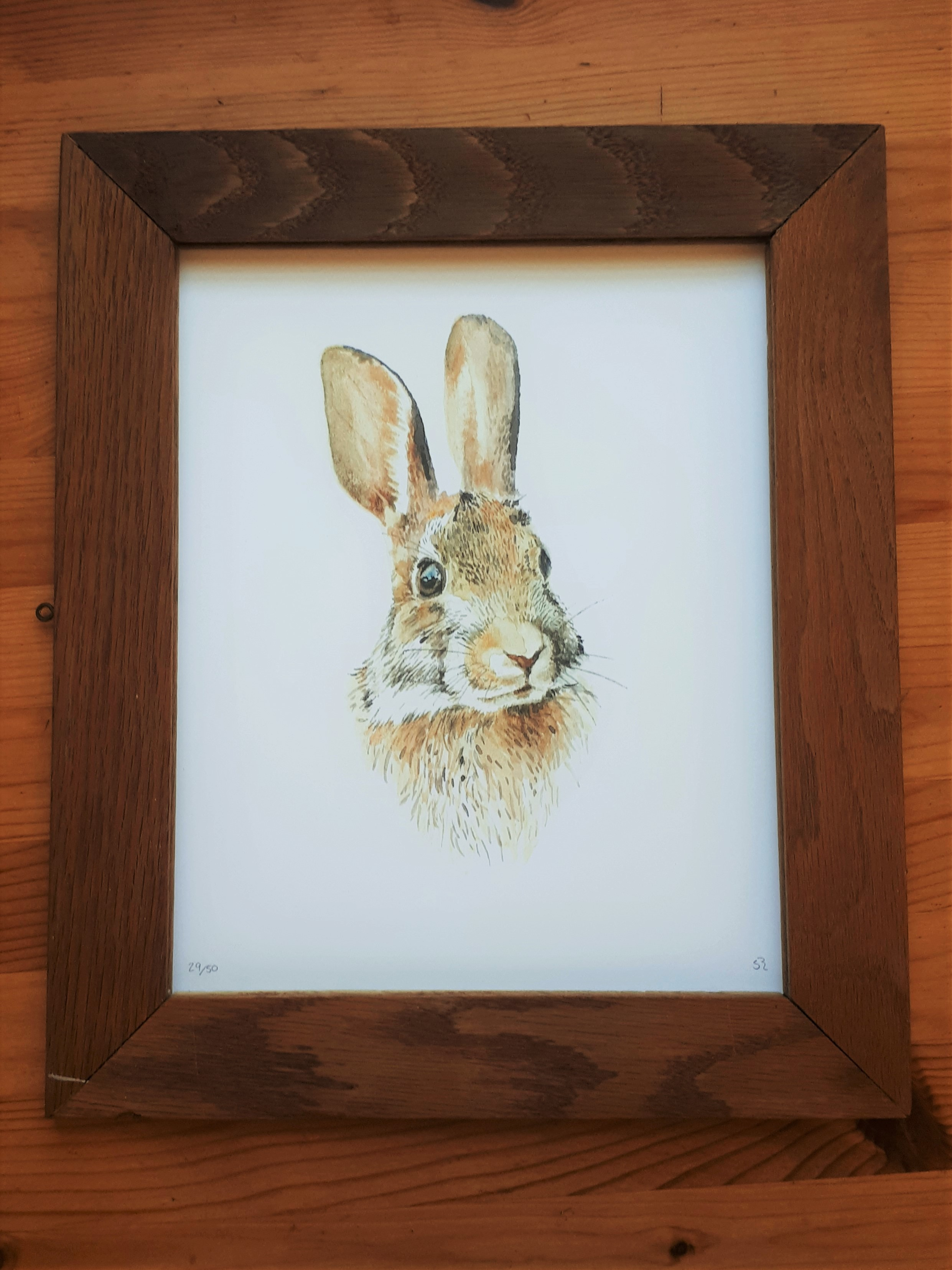 """Cottontail"" limited ed. print"