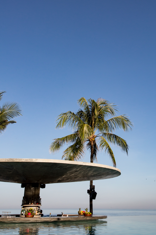 potato head - tropical modernism (2 of 112).jpg
