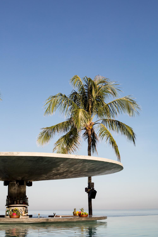 potato head - tropical modernism (3 of 112).jpg