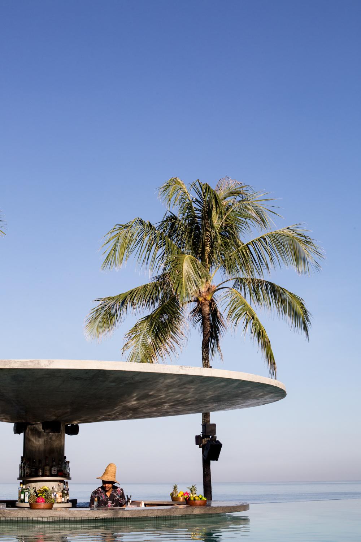 potato head - tropical modernism (5 of 112).jpg