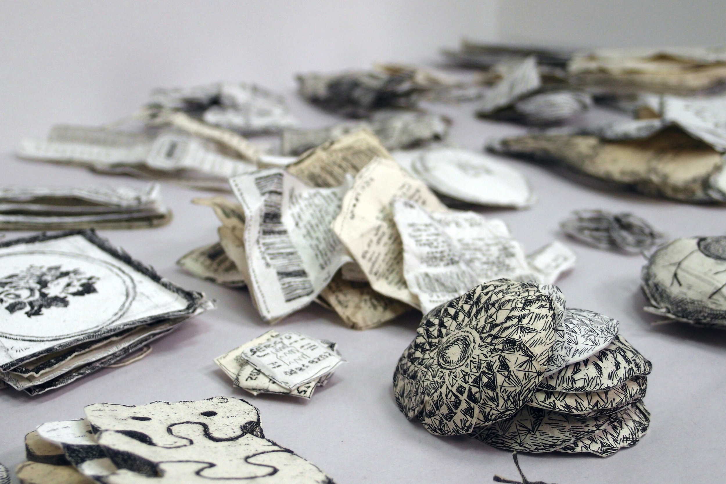 4_Carolyn Hawkins_Private Assemblage (detail)_2014.JPG