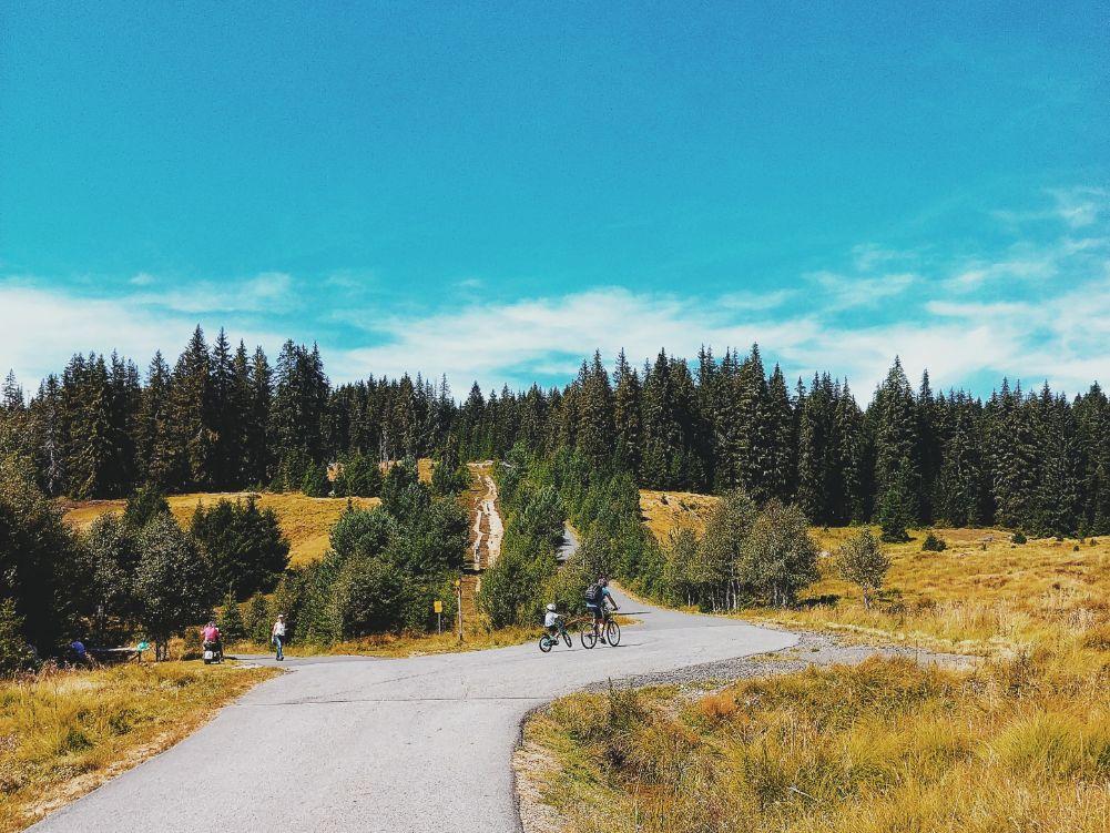 sumava-national-park (9).jpg