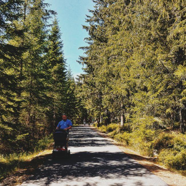 sumava-national-park (11).jpg