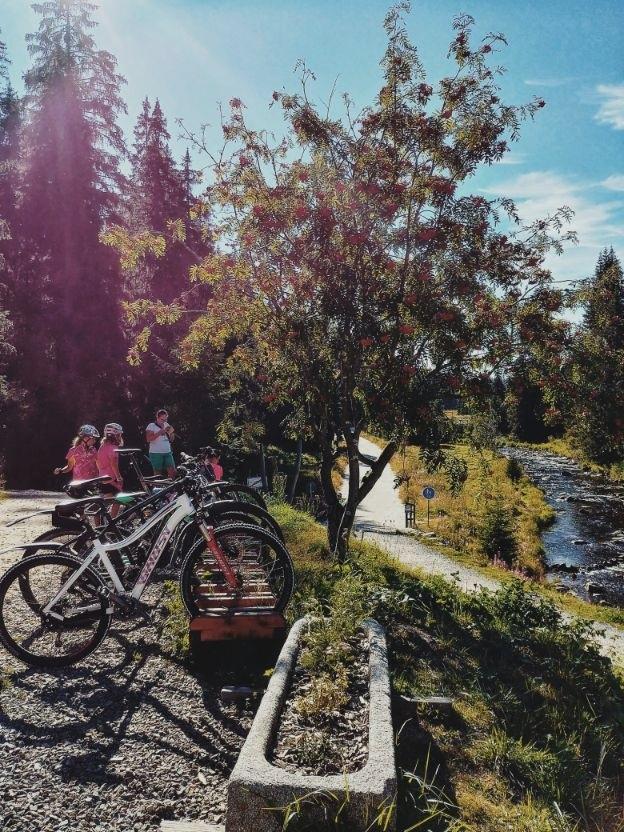 sumava-national-park (2).jpg