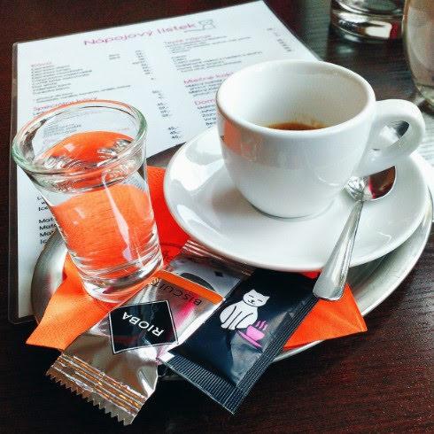 coffee-cat-olomouc (15).jpg