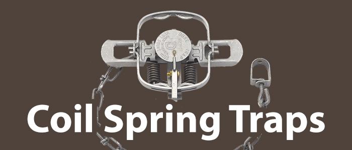 Coil Spring Traps.jpg