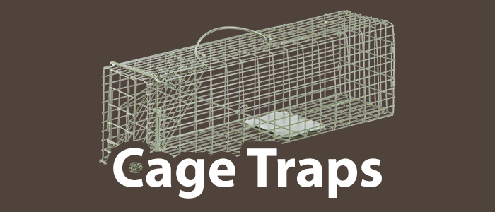 Cage Traps.jpg