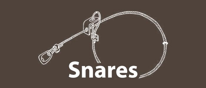Snares.jpg