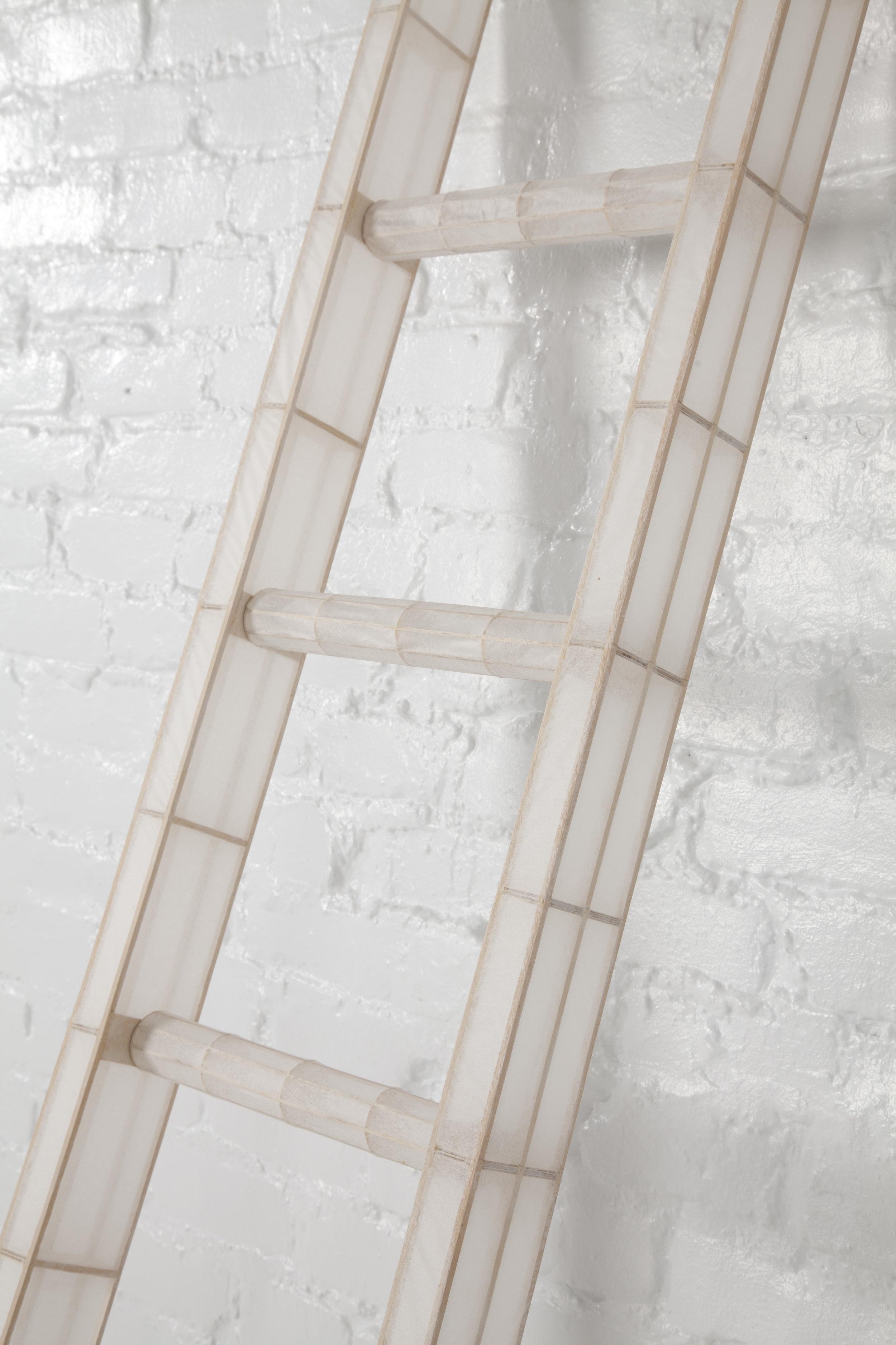 Ladder_final5.jpg