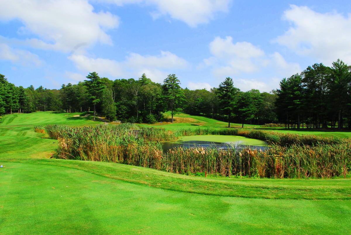 Pinecrest_Golf_Course_3.JPG_4f47568b-5056-a36a-09bbd19447731558.jpg