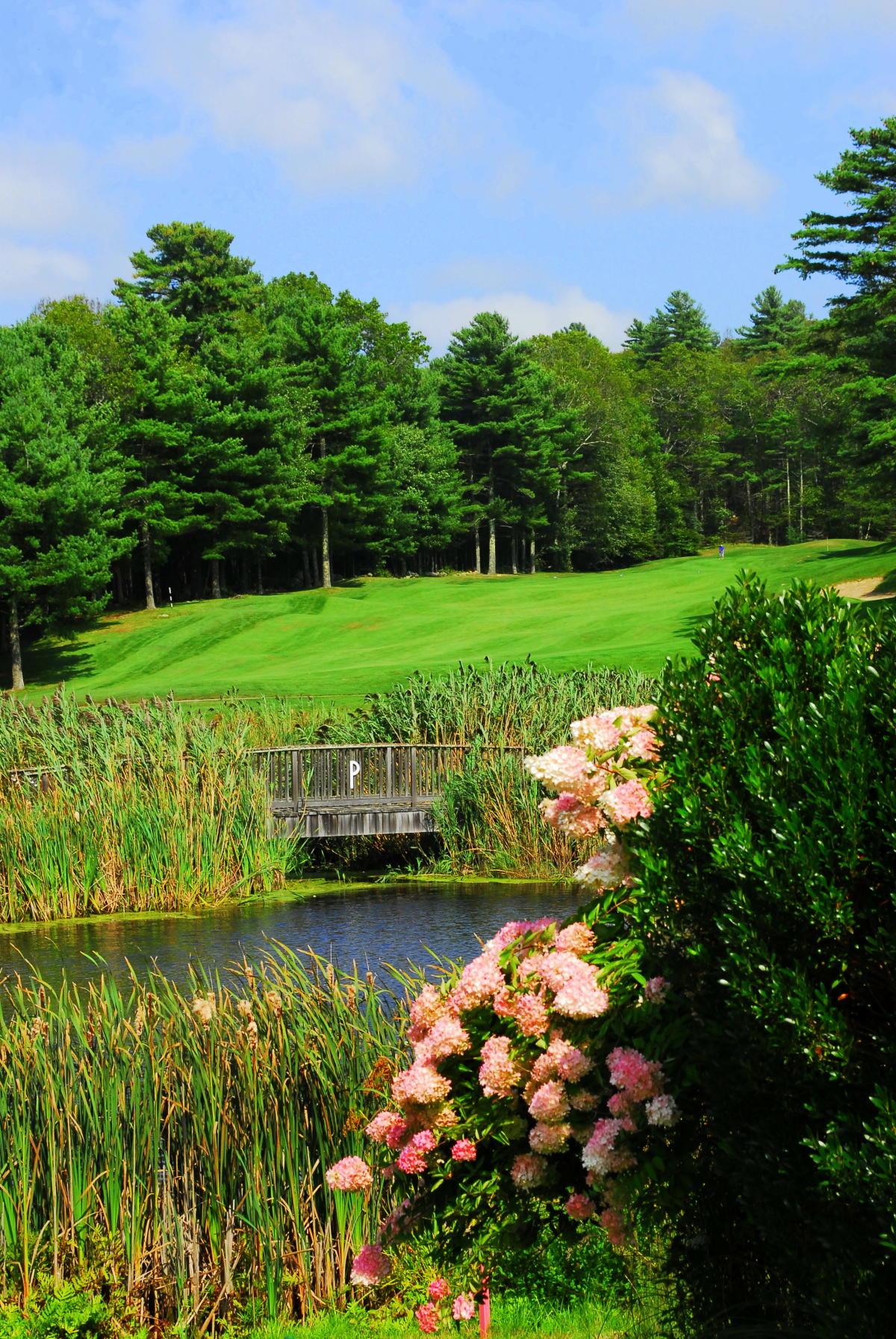 Pinecrest_Golf_Course_4.JPG_4f46ed54-5056-a36a-09c4bd3d5331bef6.jpg