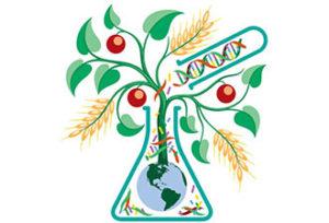 GMO-300x204.jpg
