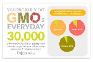 GMO-Stats-1-300x200.jpg