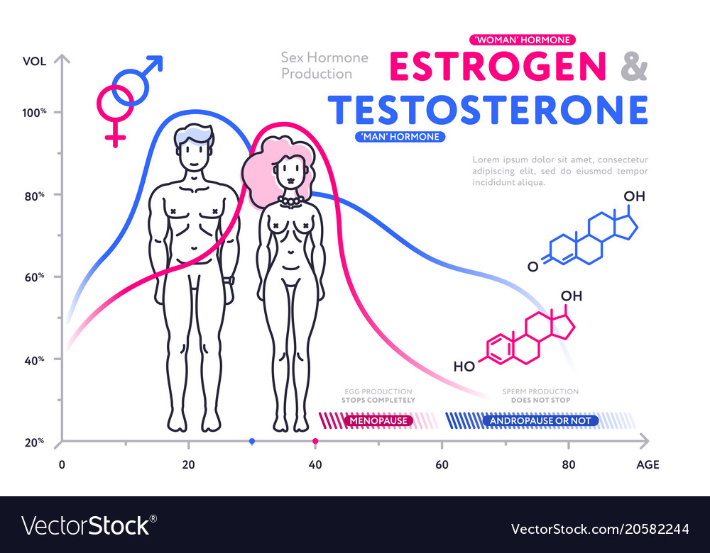 comparison-of-male-and-female-hormones-in-chart-vector-20582244.jpg