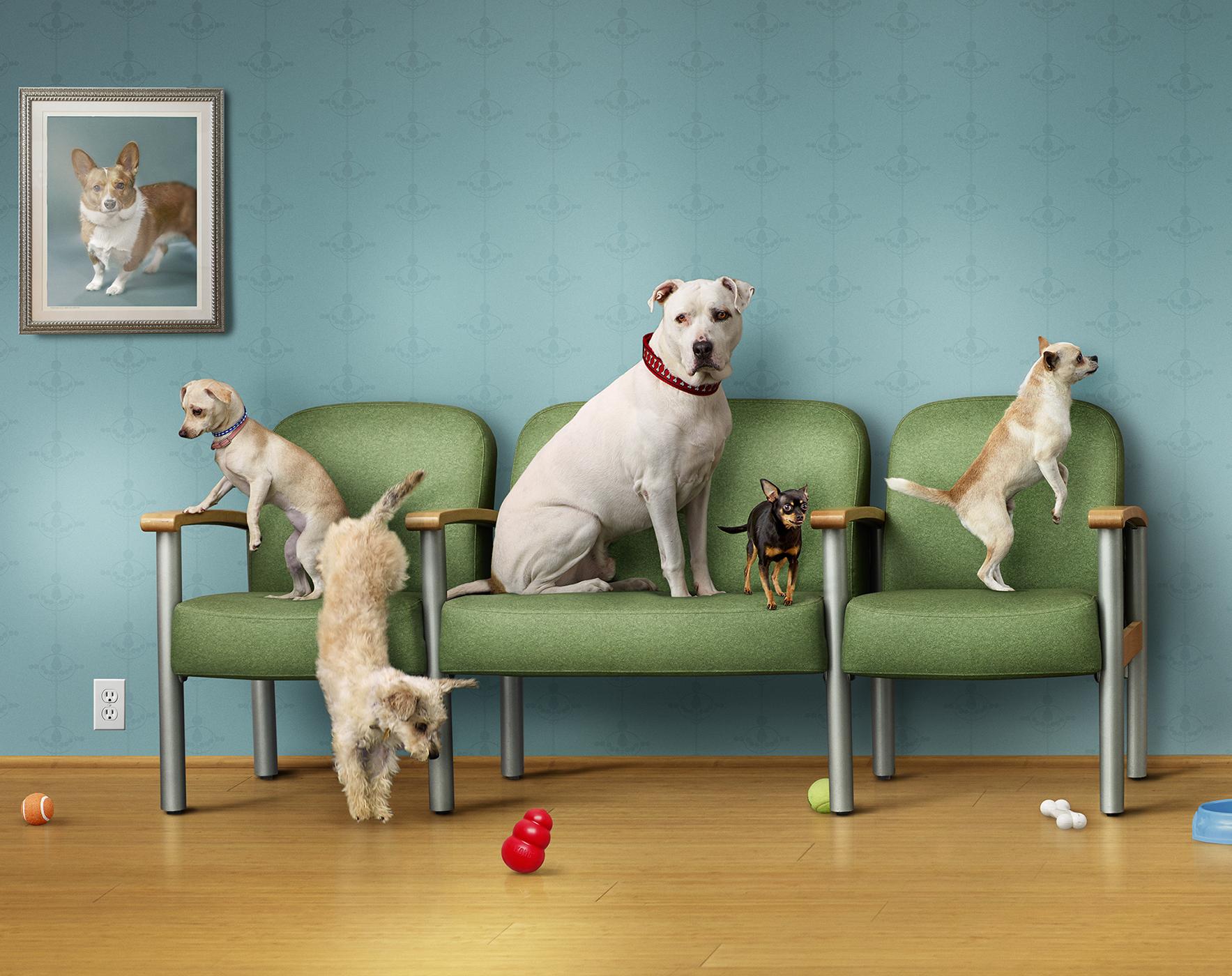 Amanda Waiting room.jpg