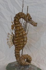 Sea Horse 2