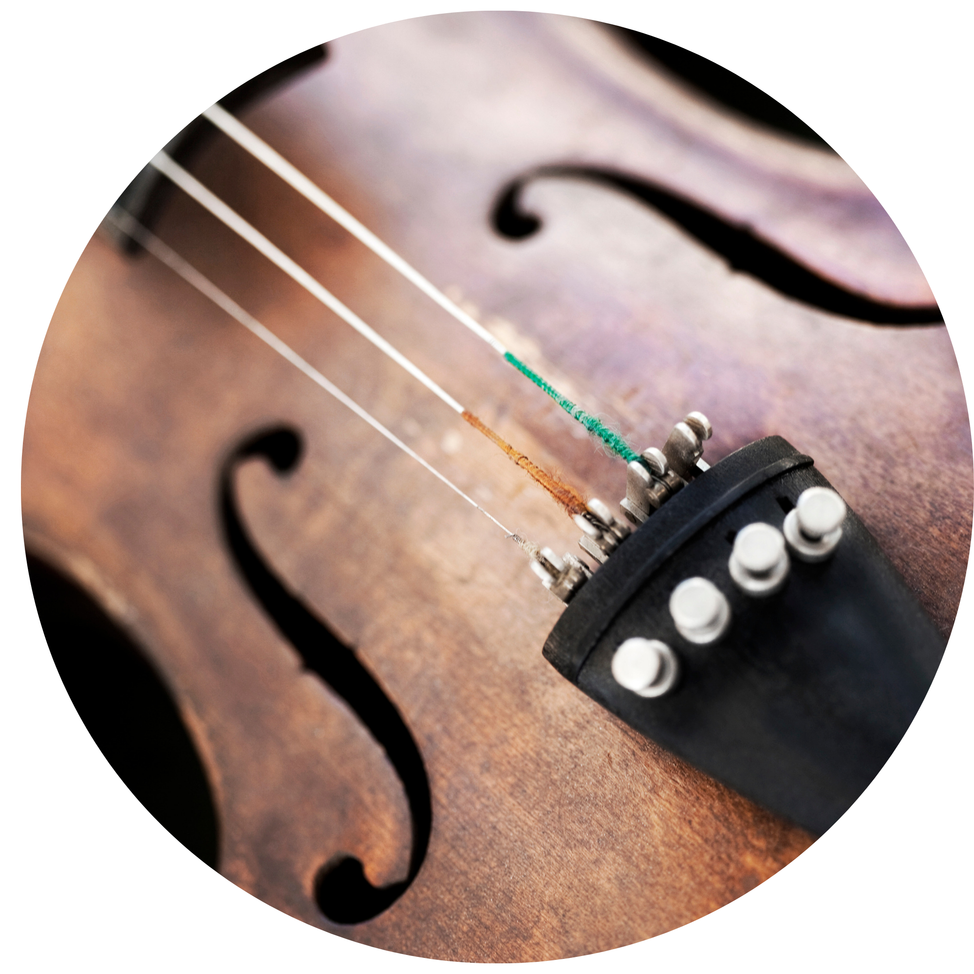 MUSIC LESSONS - Through music, you can achieve the full potential of the mind! With lessons offered in piano, voice, fiddle, guitar and more, you can explore the world of music. Offered to all ages, and all levels!