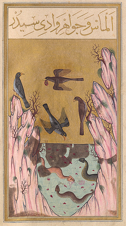 An Oriental miniature dated 1582, representing the Valley of Serpents, guarded by snakes. Eagles carry in their beaks pieces of meat in which gems are embedded, illustrating an Indian legend that appears in the tale of Sinbad the Sailor in the Thousand and One Arabian Nights. Illustration courtesy of the Bibliothèque Nationale, Paris.   Source:  http://www.lotusgemology.com/index.php/library/articles/286-pigeon-s-blood-a-pilgrimage-to-mogok-valley-of-rubies