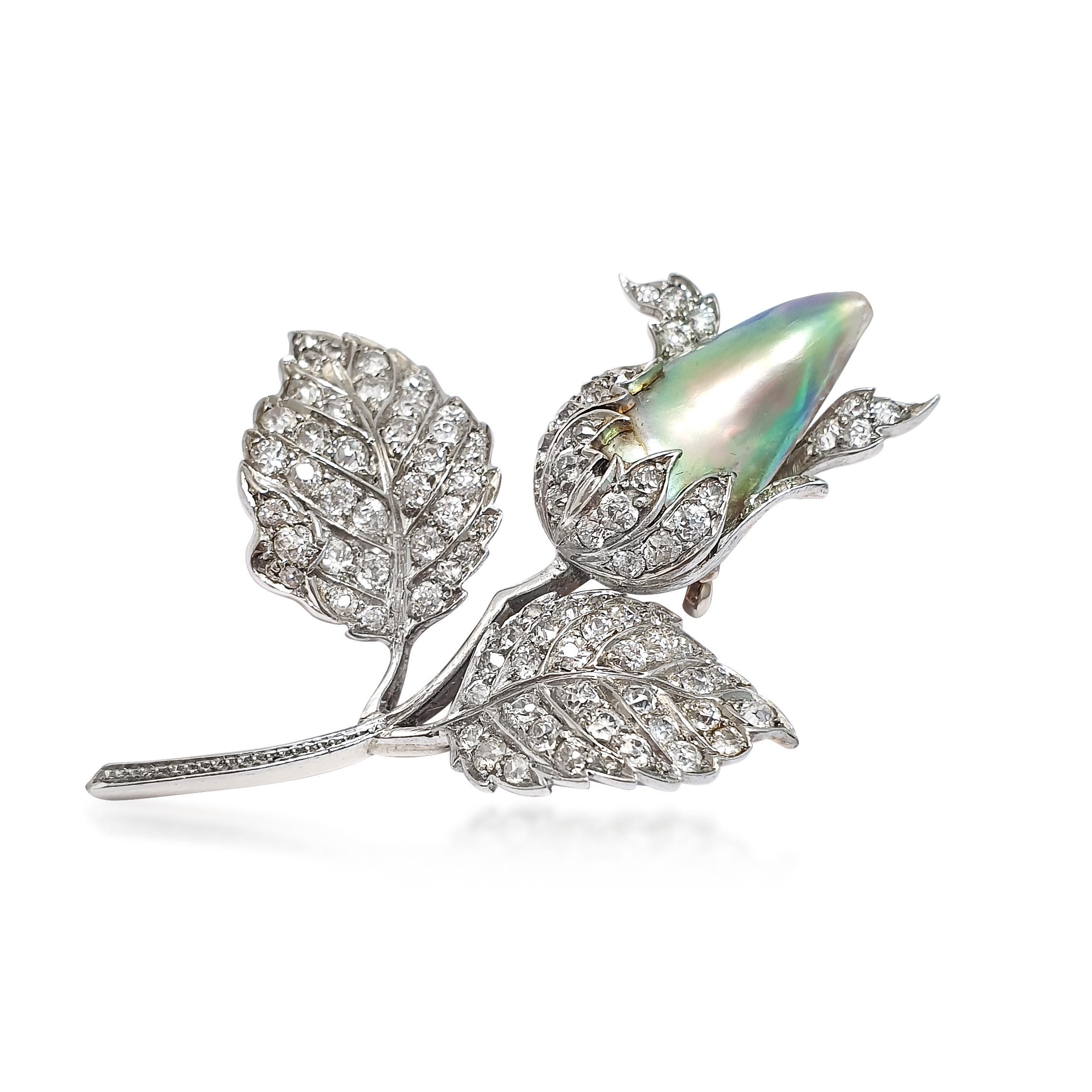 BO230:050719 A Naural abalone pearl antique brooch .jpg